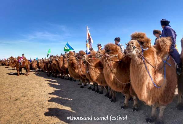 Mongolian Camel Bell Ringtone